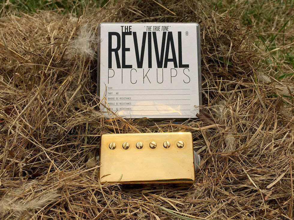 The Revival pickup RPH 3 CERAMIC y-30 humbucker PAF Set oro 8+9k the True Tone