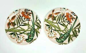 The-Haldon-Group-034-The-Parrots-034-Set-of-2-Dinner-Plates-Gift-Quality-10-25-034
