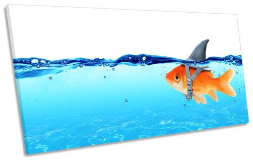 Goldfish Shark Fin Bathroom Blue CANVAS ART Print Panoramic Picture