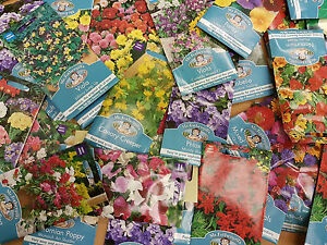Mr-Fothergill-039-s-Various-Seeds-Sow-By-2017-Date-Select-Your-Choices