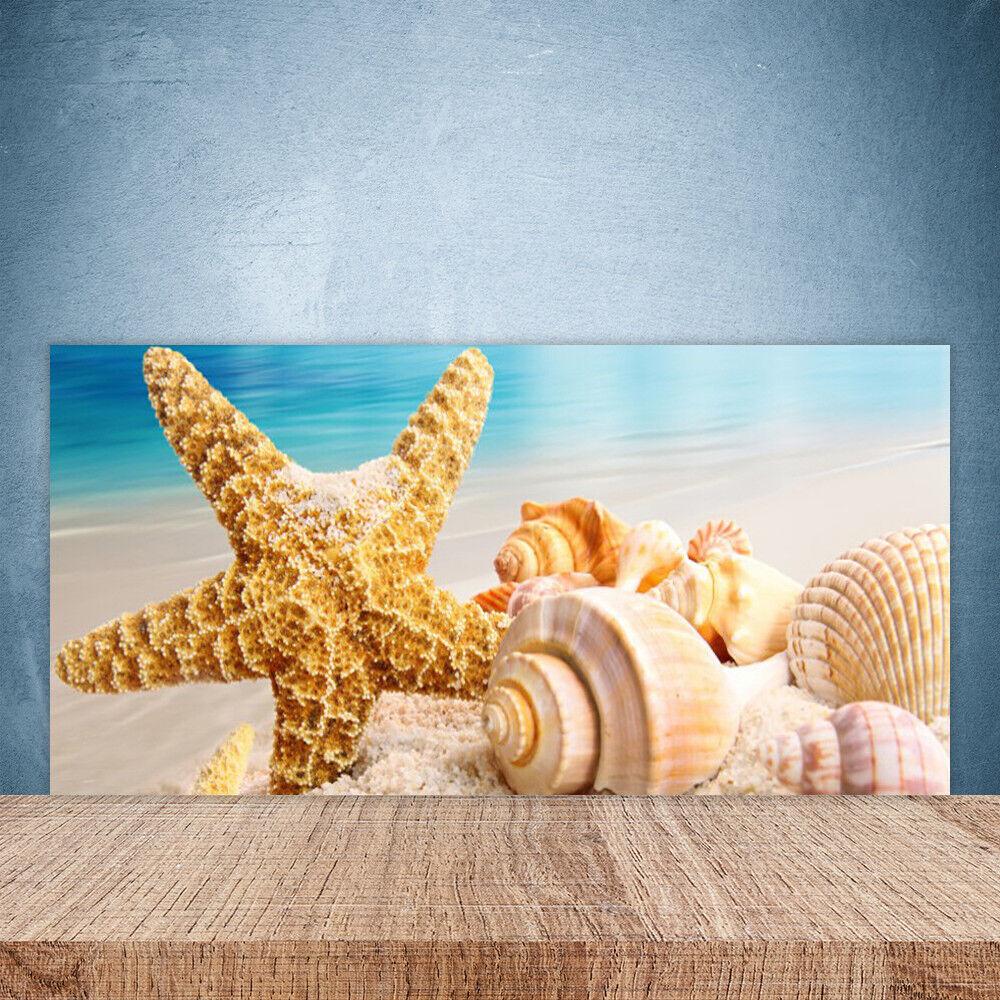 Cupboard kitchen glass wall panel art 100x50 starfish seashells