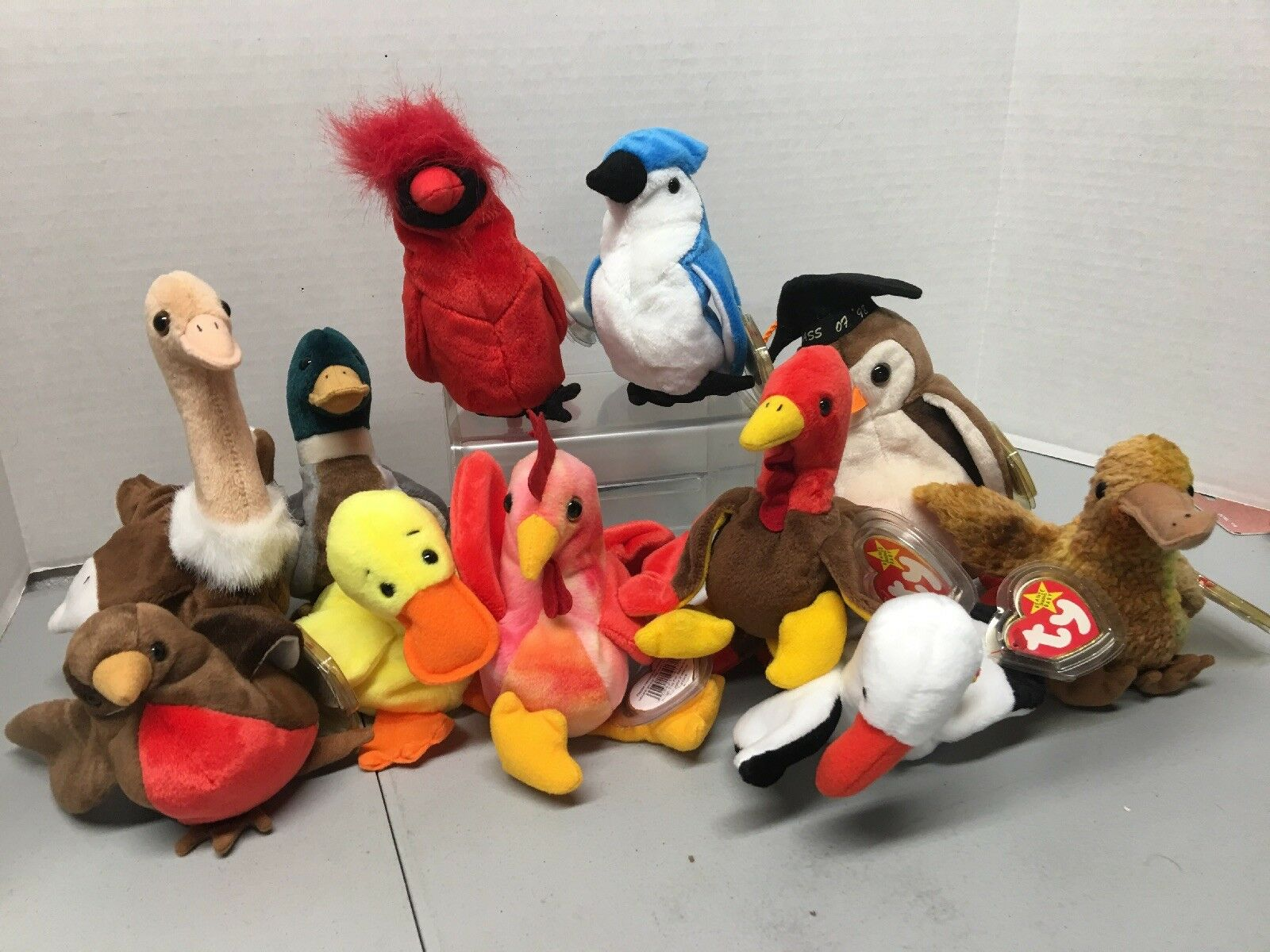 Extremely Rare Ty Beanie Baby Mac The Cardinal. Plus Others As A Set