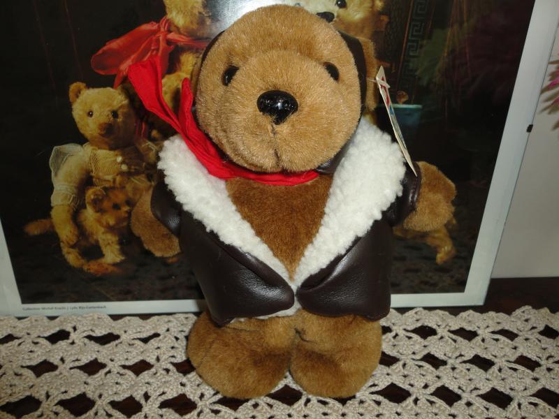 Vintage Born to Fly USA Aviator Bear Polar Friends Kent Washington