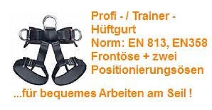 TS 111  Industrie Industrie Industrie - Arbeitsgurt Trainer - Hüftgurt Baumpflege SKT Hochseilgarten 4ad8f4