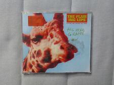 The Flaming Lips This here giraffe CD mercury Rev