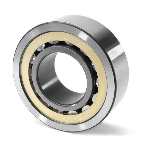 SL024914 INA Cylindrical Cylindrical Cylindrical Roller Bearing aa61bd