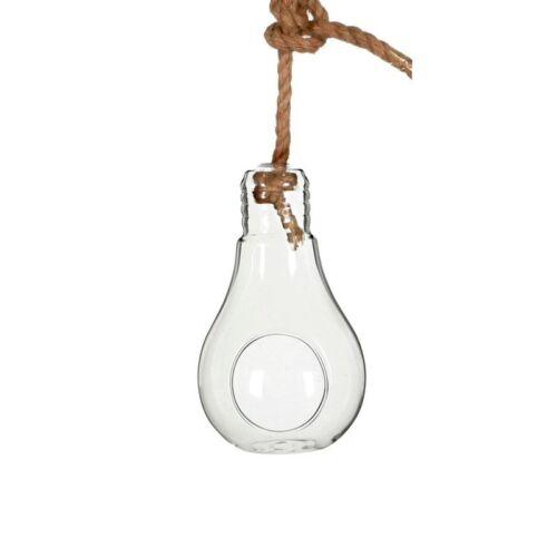 21cm Ø11cmGlasvase zum Aufhängen NaDeco® Pflanzenglas Glühbirne zum Hängen h