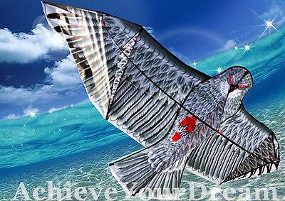 Front Poled Large Eagle Hawk Kite 230x107cm Line included OKITE2223&OKLIN2100