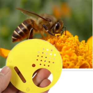 1pc Beekeeper Beekeeping Insects Blaster Trap Case Cover Bee Hive Tool Supplies