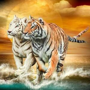 5D-DIY-Full-Drill-Diamond-Painting-Two-Tigers-Cross-Stitch-Embroidery-Craft-Kits