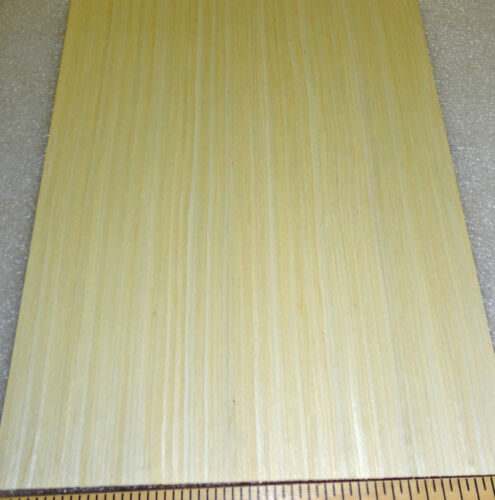 """Maple composite wood veneer 8/"""" x 10/"""" with paper backer 1//40/"""" overall thickness"""