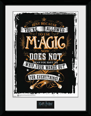 OFFICIAL GIFT HARRY POTTER WANDS OUT MAGIC PICTURE FRAME 16x12 INCH