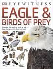 Eagle & Birds of Prey by DK (Paperback, 2016)