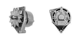 Iskra-Letrika-Lichtmaschine-Fendt-Case-IH-14V-33A-IA0507