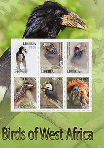 Liberia-2015-MNH-Birds-of-West-Africa-6v-M-S-II-Hornbills-Stamps