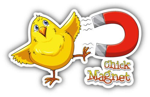 "Chick Magnet Car Bumper Sticker Decal /""SIZES/"""