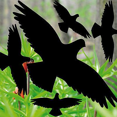 Energisch 35cm Set Aufkleber Schwarz Vögel Warnvögel Warnvogel Fenster Vogel Schutz Folie