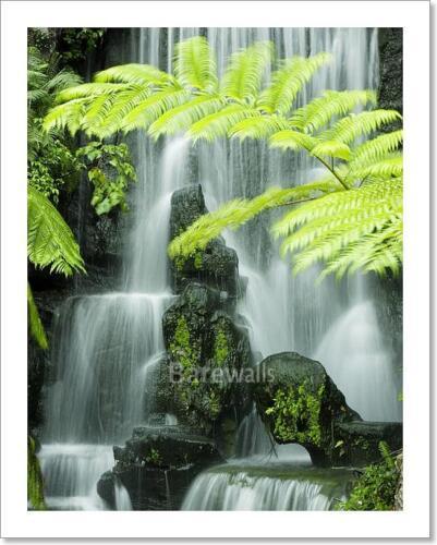 C Japanese Garden Waterfalls Art Print Home Decor Wall Art Poster
