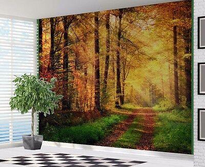 18993927 Lush Green Forest with Sunlight piercing through Wallpaper wall mural