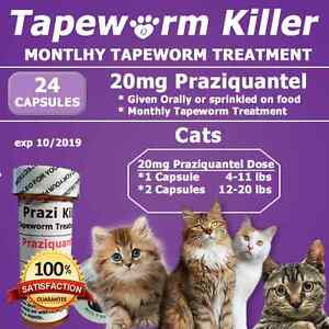 Tapeworm medicine for cats