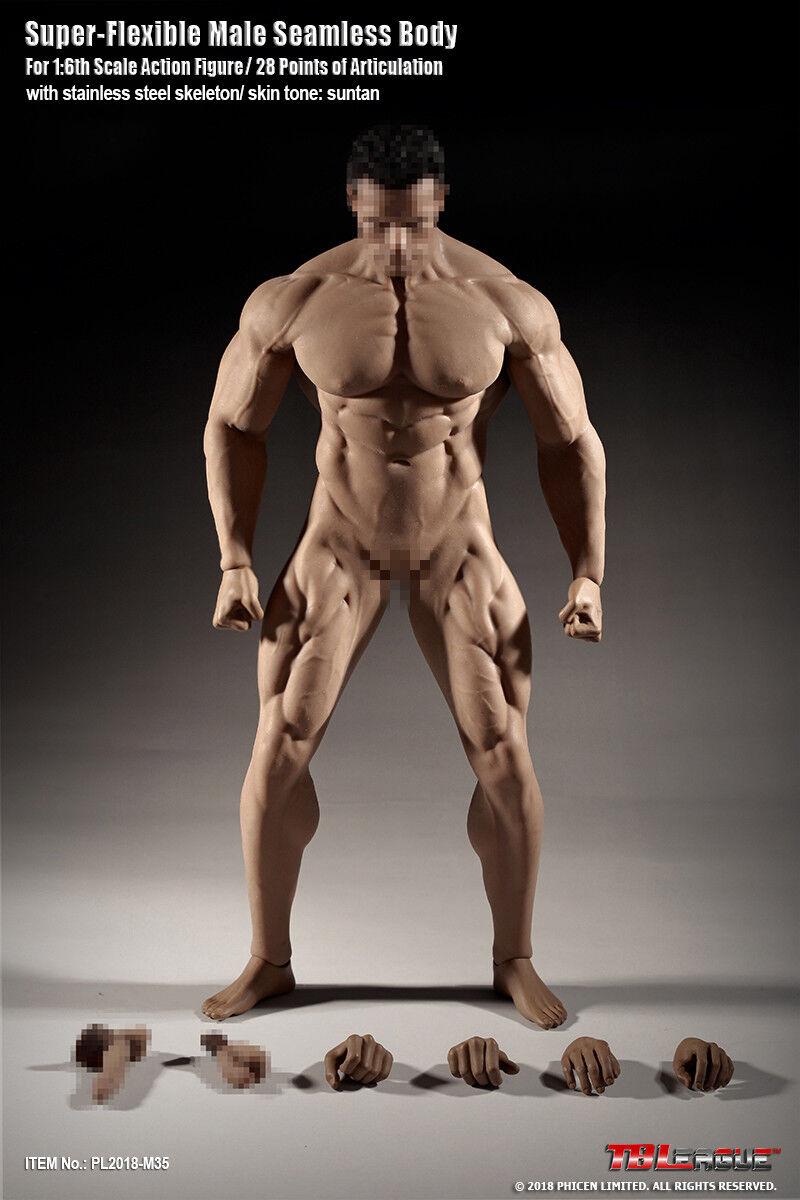 mejor opcion Tbleague PL2018-M35 1 6 súper Fuerte modelo modelo modelo de cuerpo transparente muscular masculino  Envio gratis en todas las ordenes