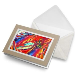 Greetings-Card-Biege-Rainbow-Bird-Feathers-Colour-3669