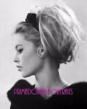 BRIGITTE BARDOT 8x10 Lab Photo 1960s Elegant Profile Grace, Fur Style Portrait