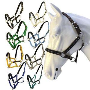Cheval Blanc équitation Rembourré Licou Shet Pony Cob Cheval Equestrain Halter-afficher Le Titre D'origine Le Plus Grand Confort