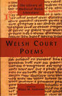 Welsh Court Poems by Rhian M. Andrews (Paperback, 2007)