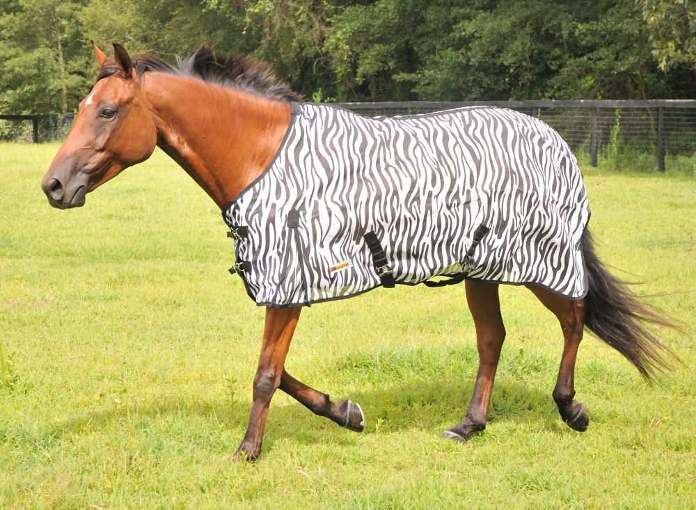 English or Western Saddle  Horse Mc Alister Softmesh Fly Sheet Size 76   limited edition