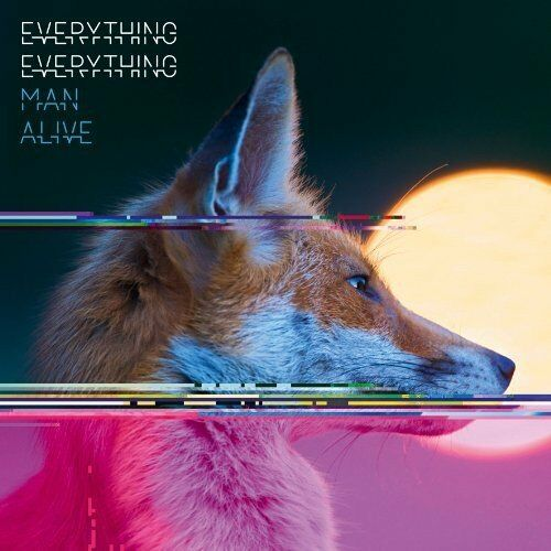1 of 1 - Everything Everything - Man Alive - Everything Everything CD SOVG The Cheap Fast