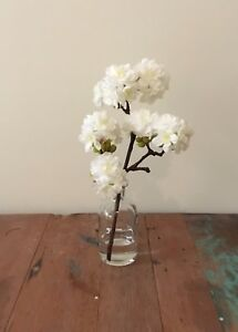 Fake Silk Flower White Blossom Artificial Water Clear Glass Vase