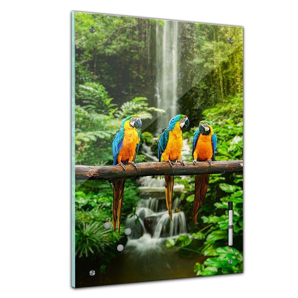 Memoboard - Tiere - Blau Gelbe Macaw Papageien