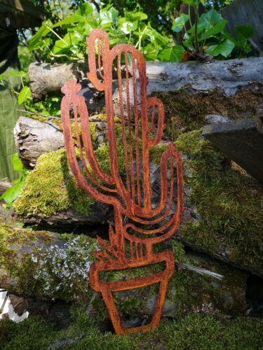 Precious Rust holding Cushion Garden Plug Cactus Great Deco Desert Flower Various models
