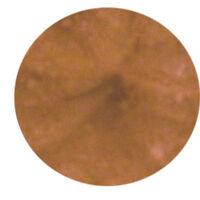 European Beauty Bare Eye Shadow Makeup Minerals - Destiny - 10g Sifter Jar