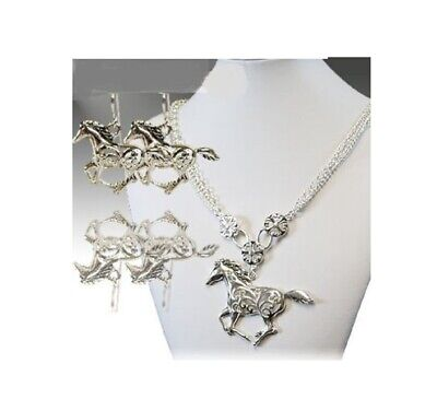 Western Cowgirl Horseshoe Texas Bronco Rhinestone Necklace /& Earrings Set #575