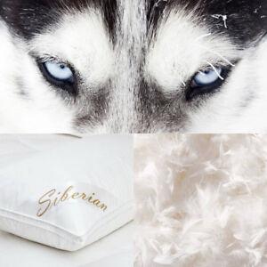 Luxury Pillows 100 Siberian Goose Down Pillow Egyptian