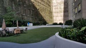 Departamento en Renta en Prol. Paseo de la Reforma 367, Cuajimalpa Santa Fe, CDMX