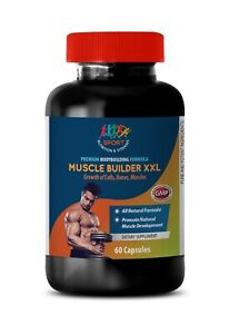 Muscle-BuilderXXL-Promotes-Joint-Growth-Ant-Aging-Cells-Bones-1B