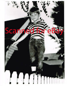 Andy Griffith Show young Ron Howard vintage 8x10 publicity photo lot