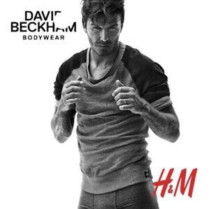 DAVID-BECKHAM-BODYWEAR-H-amp-M-Men-s-Sz-Medium-Blue-amp-Gray-Cotton-Crew-Neck-LS-Shirt