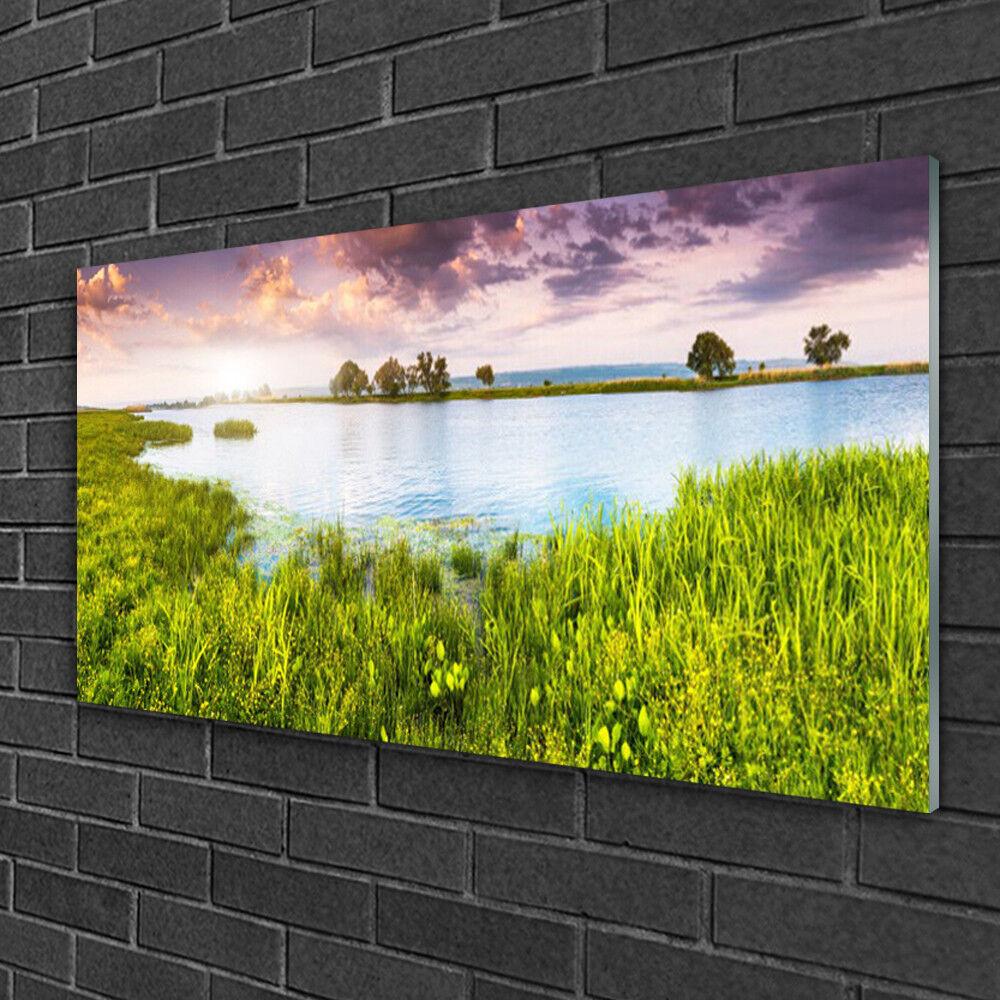 Image sur verre Tableau Impression 100x50 Nature Lac Herbe