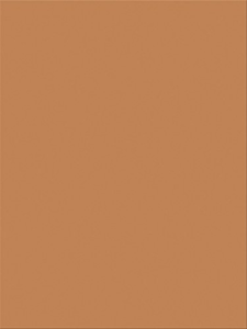 Brown Heavyweight Construction Paper 9 x 12 Inches 100 Sheets