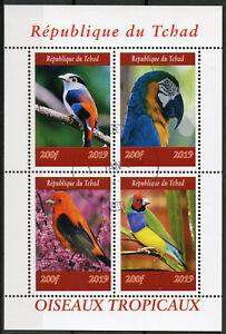 Chad-2019-CTO-Tropical-Birds-4v-m-s-i-Oiseaux-ara-pappagalli-Bird-FRANCOBOLLI