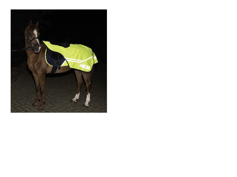 HKM YELLOW  HI VIZ LIGHTWEIGHT BREATHABLE EXERCISE SHEET PONY COB FULL FREE P&P  affordable
