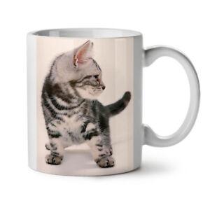 Cat Photo Kitty Animal NEW White Tea Coffee Mug 11 oz   Wellcoda