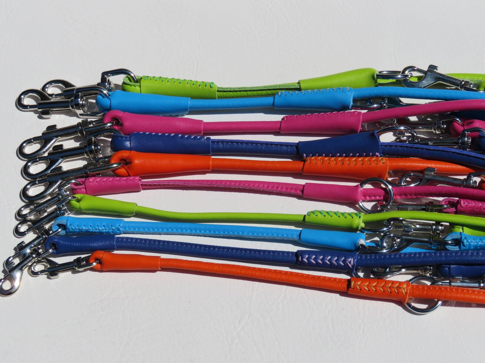 Lederleine Führleine Echtleder Leine Leine Leine Rainbow Farben Collar     | Exquisite Verarbeitung  2a07a6