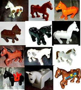 Pferd zoo frau Pferd Zoofilia