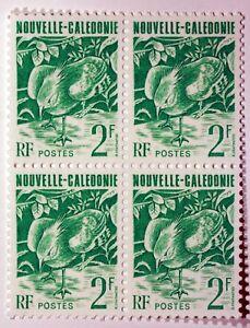 Blocco-4-Nuovi-Francobolli-Caledonia-Il-Cagou-UCCELLO-NUOVO-MNH-ACA