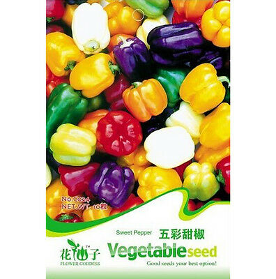 Sweet Pepper Seed Colorful Ornamental Pepper Seeds ~1 Pack 20 Seeds~